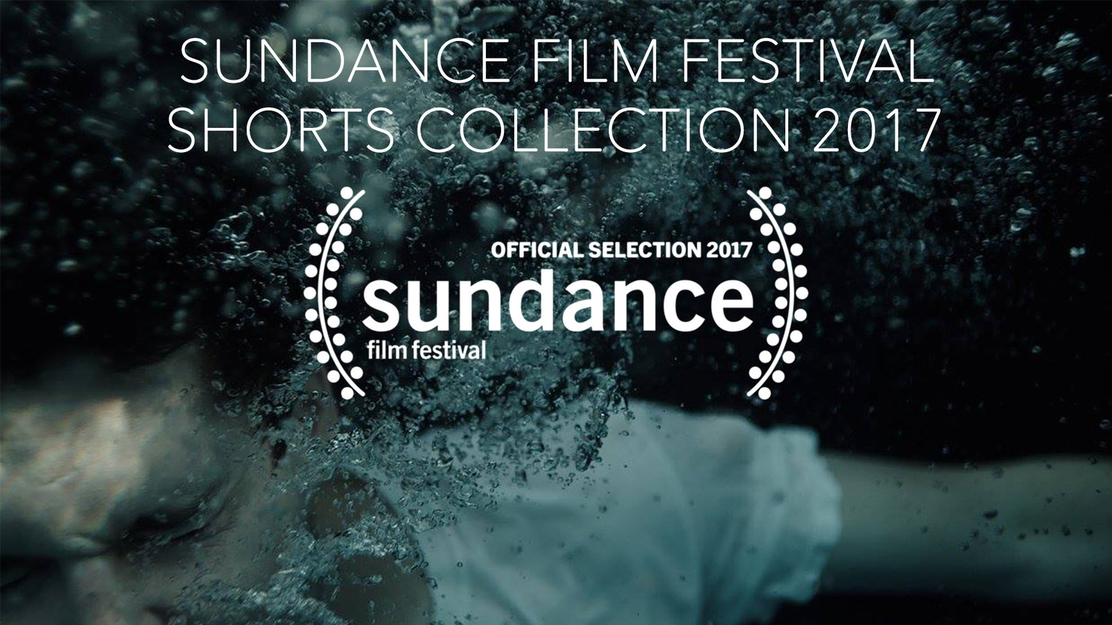 Sundance Film Festival Shorts Collection 2017